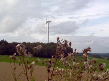 """""""Windenergie in Halver"""" – Einladung zum Vortrag und Bürgergespräch"""