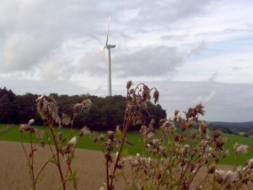 Windenergie in Halver – Gemeinsame Strategie der SPD, UWG und der Grünen