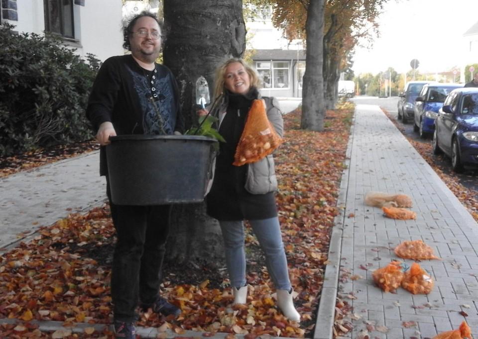 SPD Beete – Aktion im Herbst – 700 Tulpenzwiebeln gesetzt